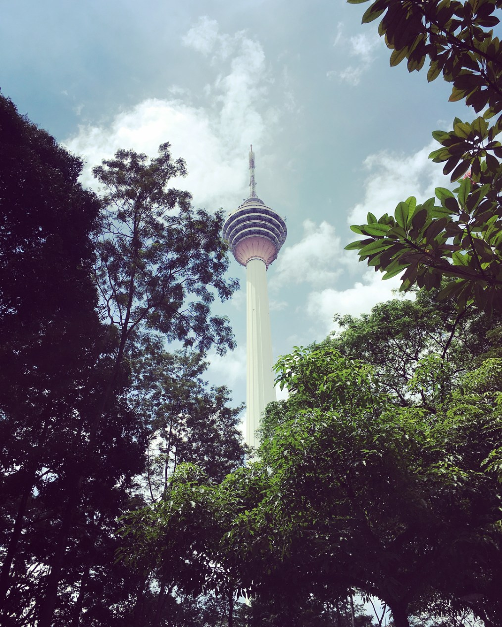 KL Tower from KL Forest Eco Park