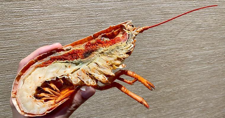 【The Food Gallery】朗廷酒店海鮮自助餐  網上訂購75折優惠