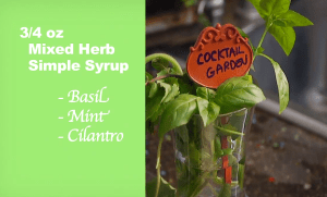 Recipe For Mixed herb simple syrup Foodie gardener