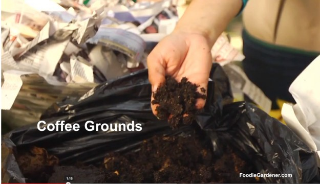 Coffee grounds composting bin foodie gardener
