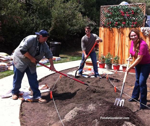 shirley crew veggie garden