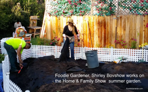 foodie gardener shirley bovshow designing home and family summer vegetable garden