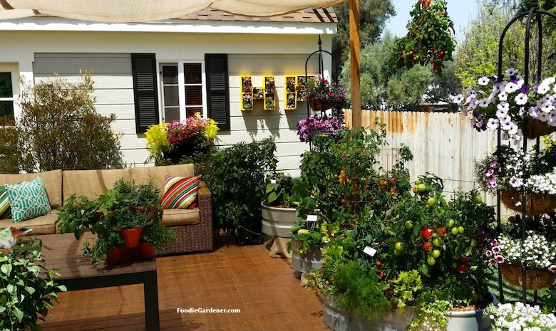 patio with container vegetable garden and entertaining sitting area foodie gardener