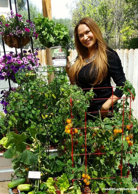 shirley bovshow container vegetable garden with tomatoes cucumbers burpee home gardens grow vegetables on your patio home and family