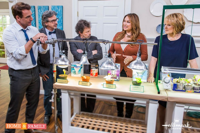garden designer expert shirley bovshow teaches grow lights 101 on home and family show host of revenge of the nerds and hosts mark steines cristina ferrare home and family show hallmark channel