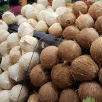 WHITE-BROWN-COCONUTS-IN-SHELL-MEXICAN-MARKET-FOODIE-GARDENER-BLOG