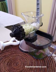 macerating-juicer-with-wheatgrass