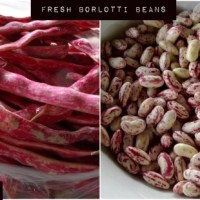 Italian Crispy Beans: Soft on the Inside, Crispy on the Outside