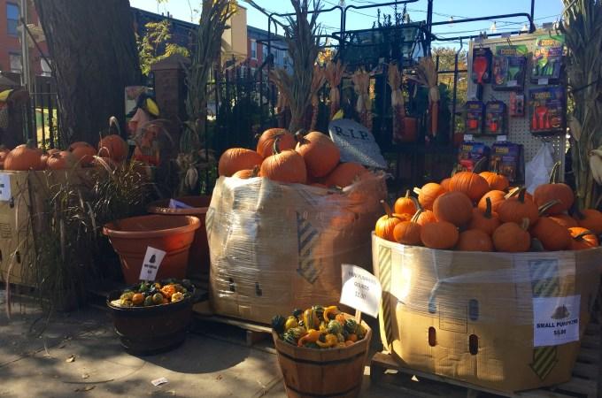 Pumpkins New York