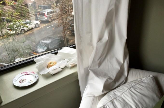 Window ledge, Clinton Hill