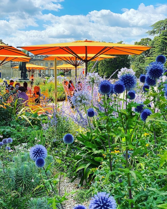 Blue flowers and orange umbrellas in Jardins Public Bordeaux