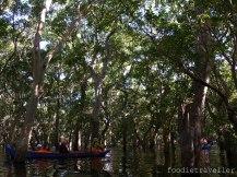 Kompong Phluk Mangroves