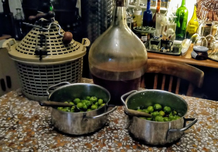 Odgorčavanje i fermentacija zelenih & ljubičastih maslina