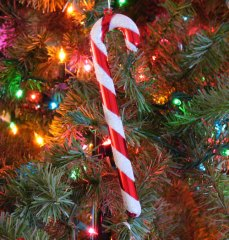 candy-cane-on-christmas-tree