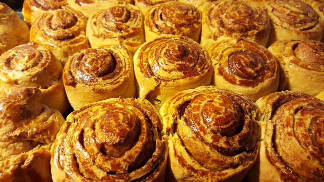 cinnamon-rolls-1079584_1920