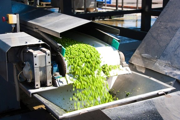 Food manufacturing waste_Peas