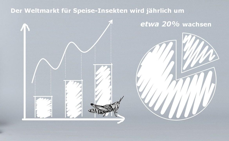 Wachstum des Weltmarktes für Speise-Insekten