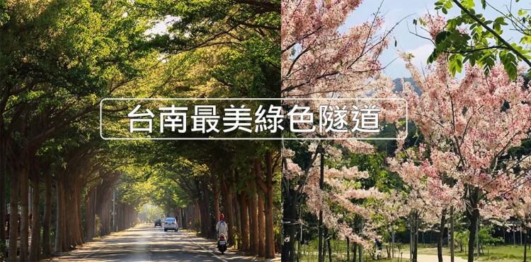 台南旅遊景點》給你台南最美的綠色隧道,武漢肺炎期間外出郊遊最佳地點