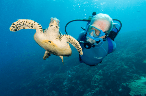 Food Integrity Now – E22 – Jean-Michel Cousteau on the health of the Gulf.