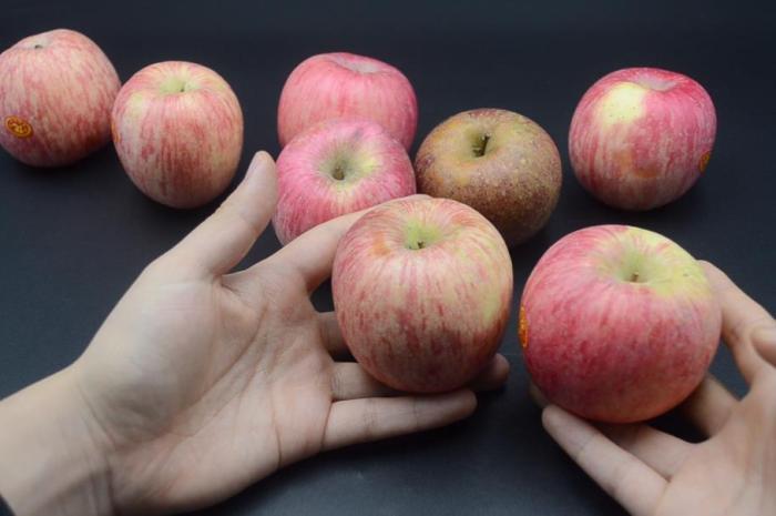 蘋果怎麼識別,個個脆甜多汁