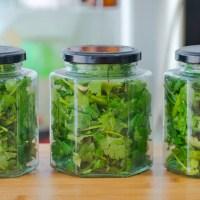 香菜保存有訣竅3種儲存方法,不發黃不腐爛去試試