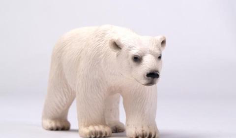 полярный мишка