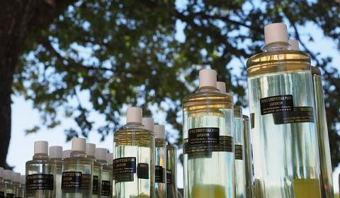 lavender-oil-1521779_640