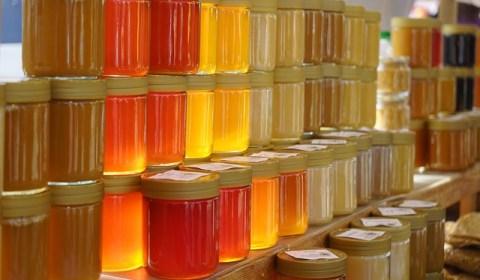 honey-318175_640
