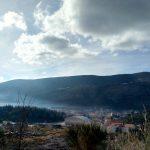 Жизнь в Черногории. Второй месяц. Дреновик.