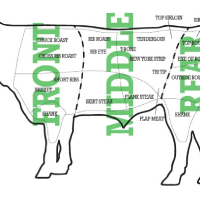 Cuts of Beef and Temperature of Beef