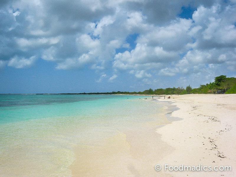 barbuda_caribbeans
