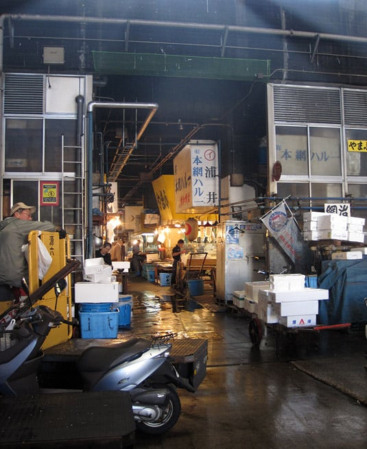 Arriving at Tokyo's Tsukiji Fish Market