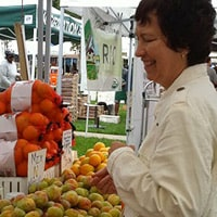 Dianne Jacob, Will Write for Food