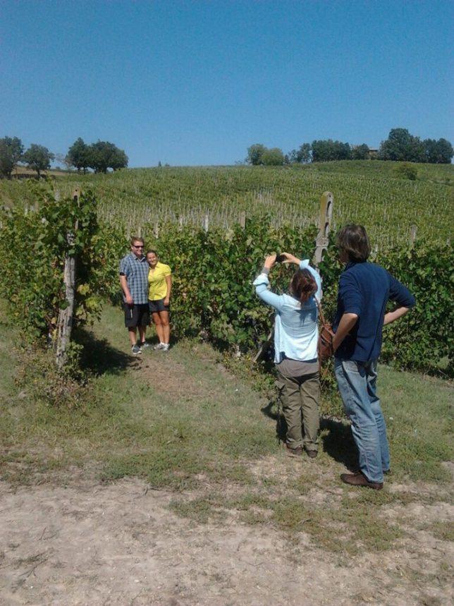 FWT vineyard