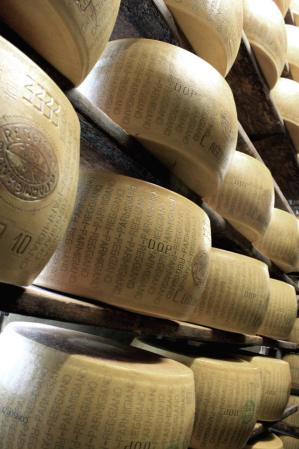 Cheese Tour. cheese-racked-parmigiano-fwt.jpg