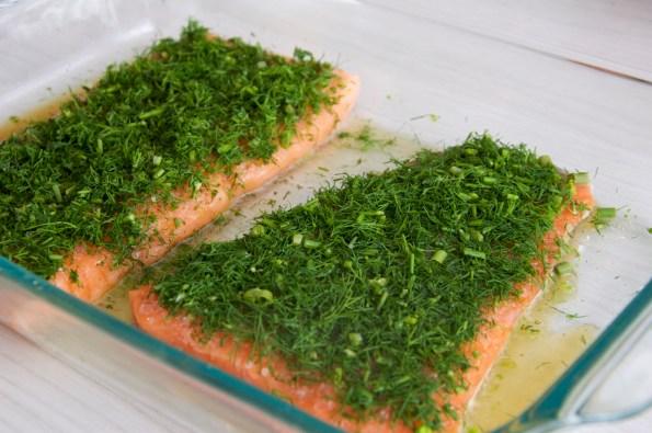 _salmon gravlax0269