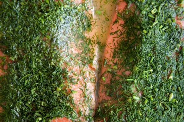 _salmon gravlax0340