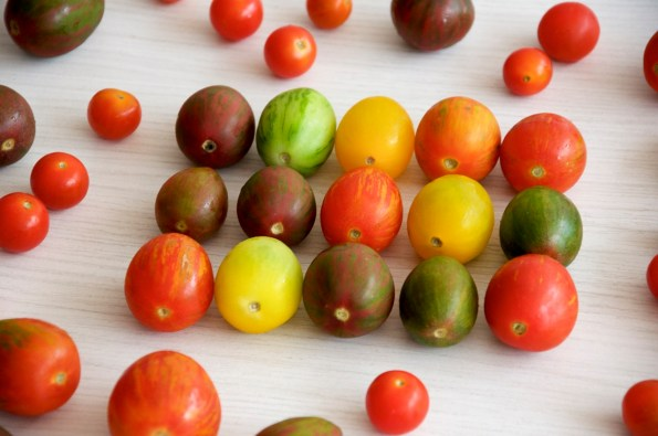 _pollo tomate cherry0454