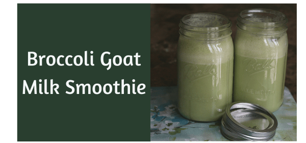 broccoli goat milk smoothie