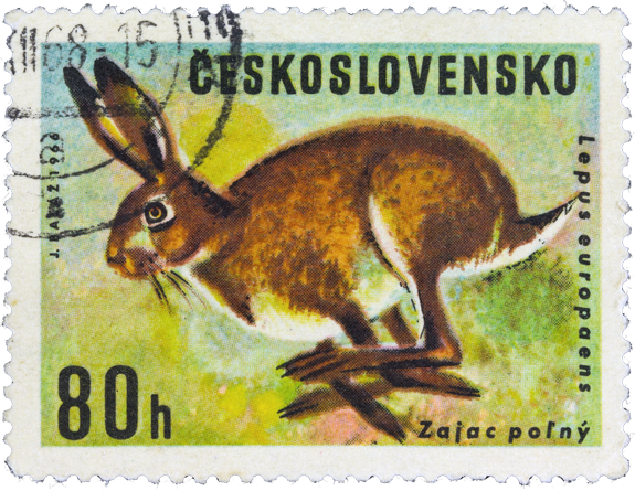 Stamp from Czechoslovakia - 1966