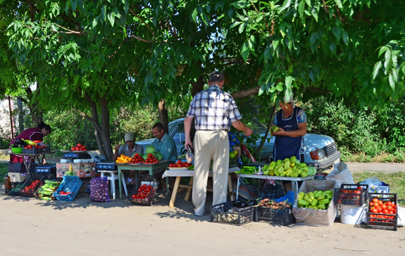 Road to Vylkove - Roadside Vendors