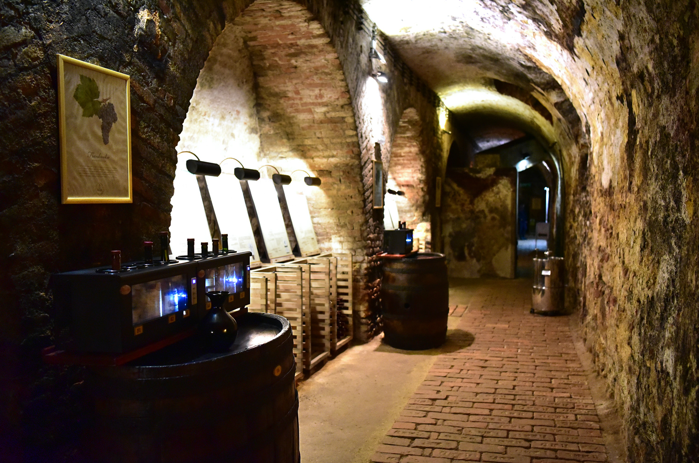 Moravia - Valtice - Salon of Czech Republic Wines