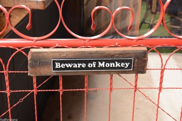 Grease Monkey Braddon beware the monkey