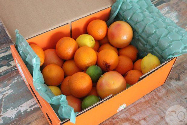 sapbox fruit nl
