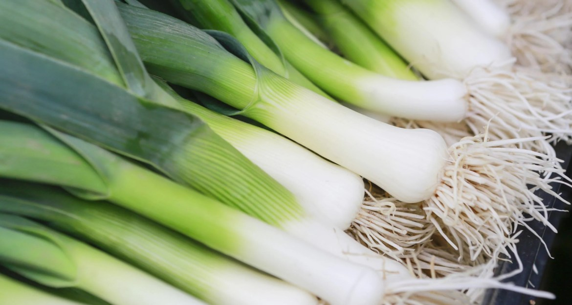 display of leeks