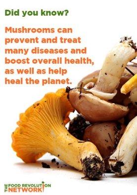 Mushroom-health-and healing-benefits-small