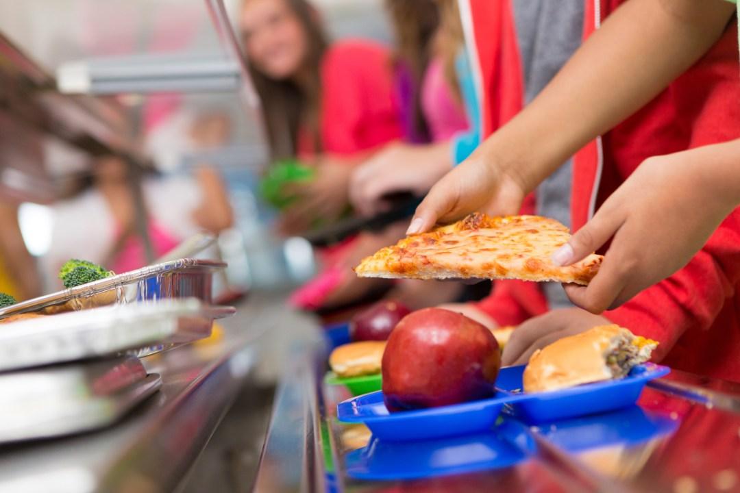 學校午餐計劃:改善學校午餐的4種資源