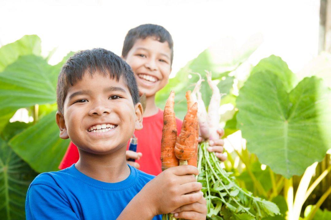 孩子們對胡蘿蔔的收穫感到興奮