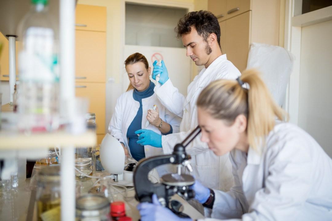 科學家在實驗室中研究天然香料