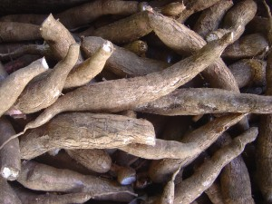 Cassava (Tapioca) – Properties and health benefits / medicinal uses